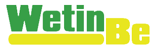 WetinBe's Company logo